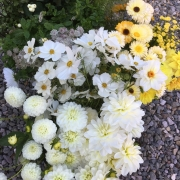 delamere-flowers-funeral