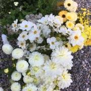 delamere-flowers-funeral