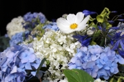 funeral-event-delamere-flower-farm-page-top