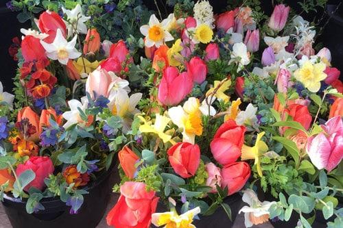 Bouquets for Sale at Delamere Flower Farm